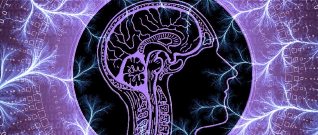 beyin-bilinc